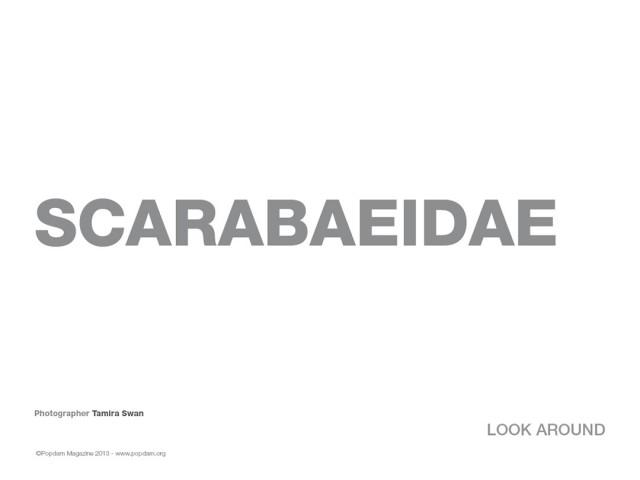 Sscarabeide