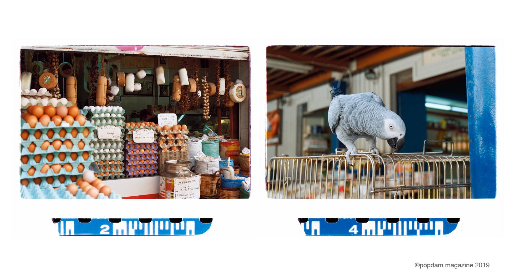 market-00.jpg