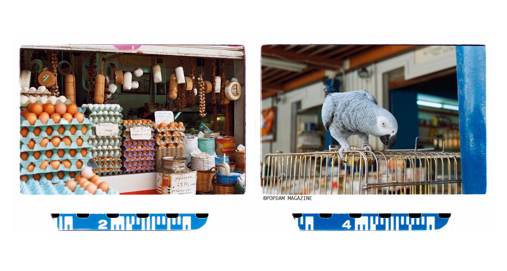 market-01.jpg